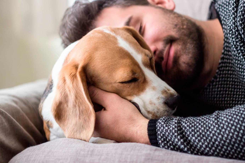 Chico abraza perro con cariño